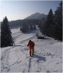 Des skifahrers freude